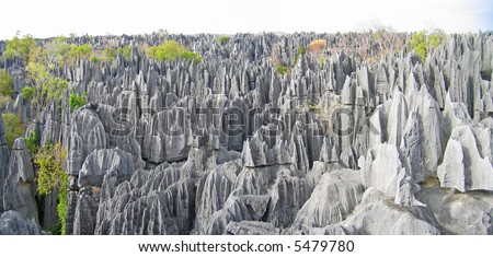 Tsingy peaks forest in Madagascar. - stock photo