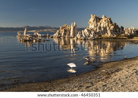 tufa formations on Mono Lake in the Owens Valley of California