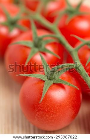 Tuft picking tomatoes - stock photo