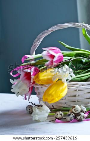 Tulip flowers in white basket - stock photo