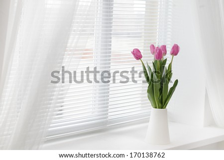 tulip in room - stock photo