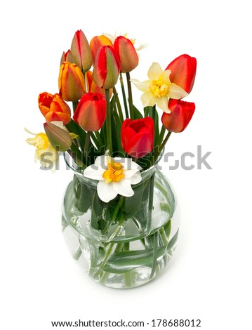 tulips and narcissus flowers in a glass vase isolated over white - stock photo