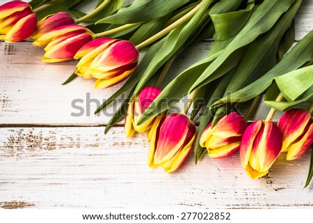 Tulips arrangement on a wooden planks background for easter backgrounds, mothers day, wedding invitation, greetings card and invitation cards - stock photo