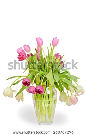 Tulips bouquet in vase isolated on white background - stock photo
