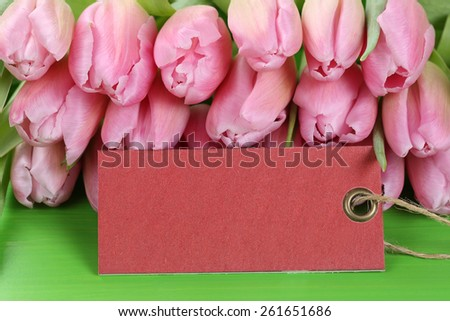 Tulips flowers in spring, birthday or mother's day with empty tag and copyspace for your own text - stock photo