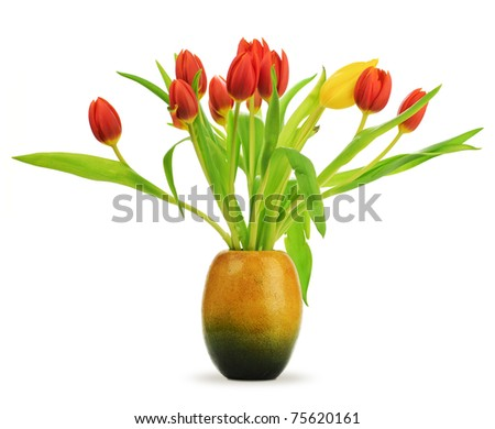 Tulips in a vase over a white background with red tulips and one yellow, with leaves