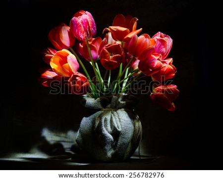 Tulips in the pot from sacking on dark background - stock photo