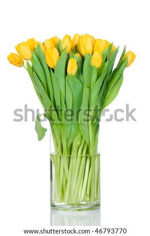Tulips in the vase against white background