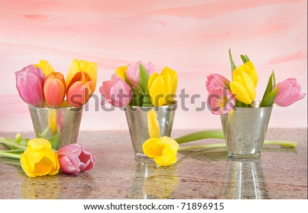 Tulips Vases On Pink Watercolor Background Stock Photo Royalty Free