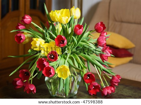 Tulips on a Table in a Living Room - stock photo