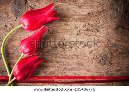 tulips on wooden background - stock photo