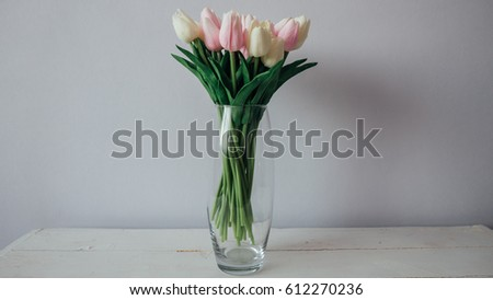 Tulips white and pink on a white background standing on a white wooden table