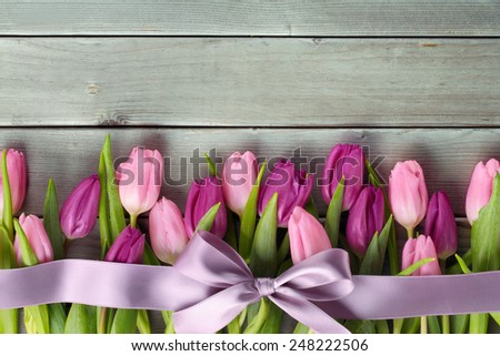 Tulips with a bow on wooden background - stock photo