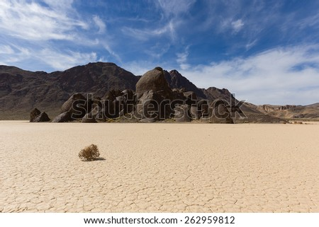 Tumbleweed on dry lake floor with cracked mud, mountains and sky with clouds. Racetrack Playa. Death Valley national park. California. - stock photo