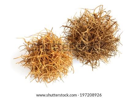 Tumbleweed on  white background - stock photo