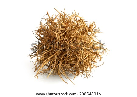 Tumbleweed on white background - stock photo