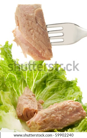 tuna and salad - stock photo