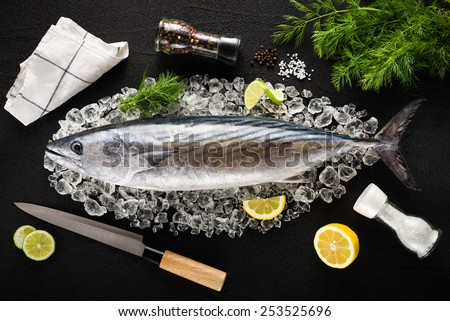 Tuna fish and ingredients on ice on a black stone table top view - stock photo