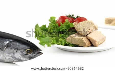 Tuna fish in front of a plate with salad - stock photo