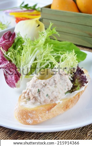 Tuna fish  sandwich with salad on on white plate