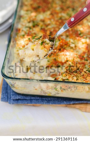 Tuna, Leek, Mornay and Orange Pasta Bake with Bread Crumb and Cheese Topping (Macaroni and Cheese), copy space for your text - stock photo