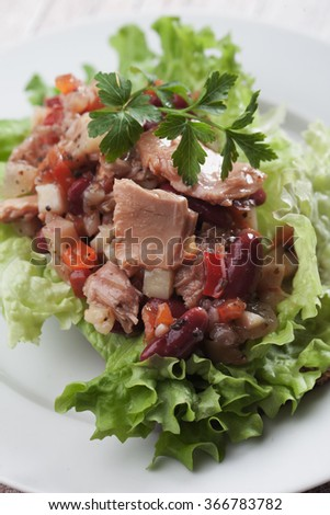 Tuna salad with kidney bean, lettuce and vegetables - stock photo