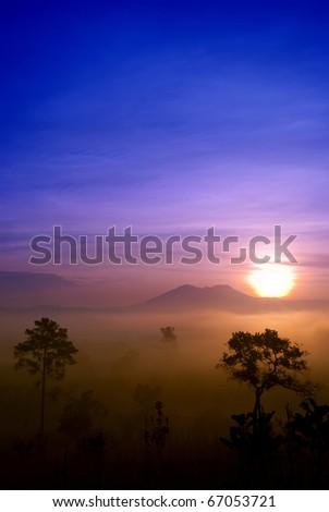 Tung Salang Luang - stock photo