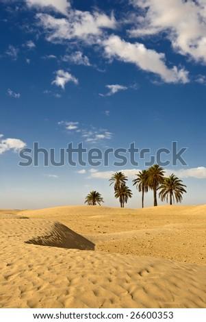 Tunisia. Somewhere on desert near Douz - stock photo