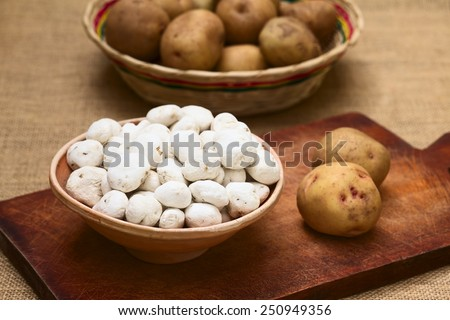 Tunta, also white chuno or moraya, is a freeze-dried (dehydrated) potato made in the Andes region, mainly Bolivia and Peru (Selective Focus, Focus one third into the tuntas) (Lit with natural light) - stock photo