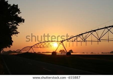 Turf Farm Sunrise - stock photo