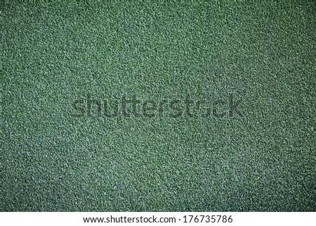 Turf grass background.  - stock photo