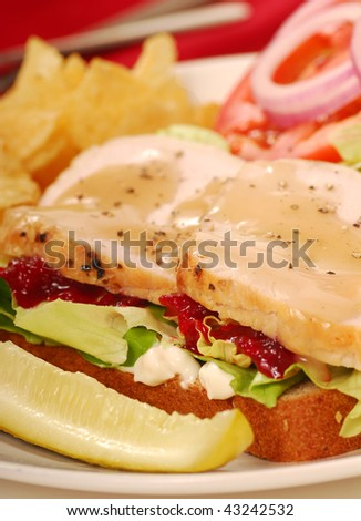 Turkey sandwich with potato chips and dill pickle - stock photo