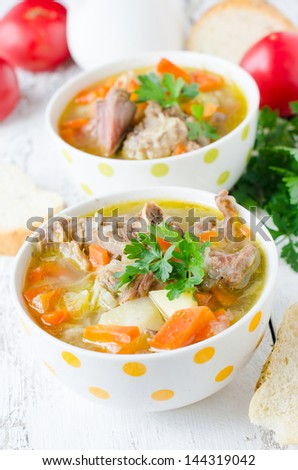 Turkey soup with vegetables - stock photo