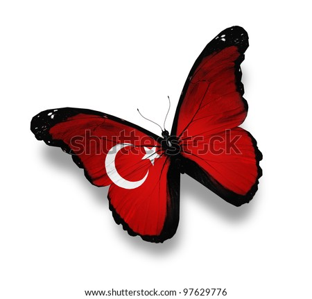 Turkish flag butterfly, isolated on white - stock photo