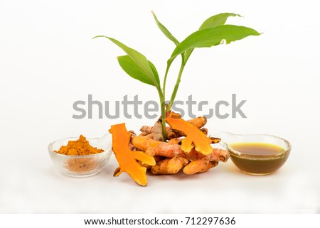 Turmeric, rhizome, tree and Oil, Thai herbs have medicinal properties.