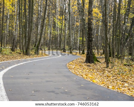 Turning asphalt road covered with yellow leaves entering autumn park surrounded with trees from surface view
