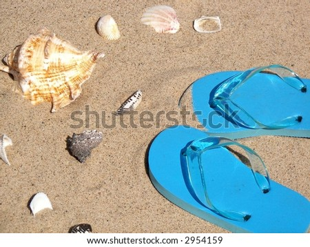 turquoise flip-flops in beach sand with seashells - stock photo