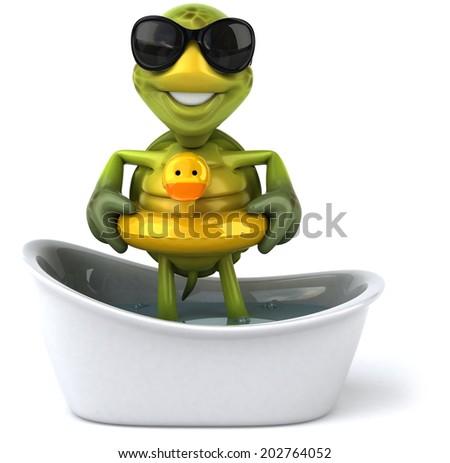 Turtle - stock photo
