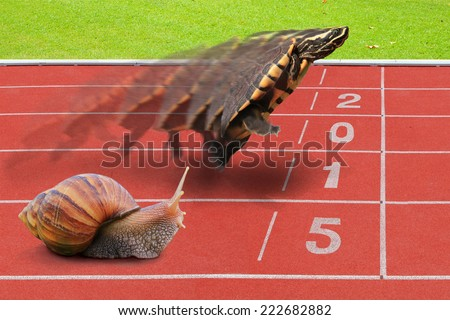 Turtle and Snail effort running competition sport on red rubber track near start line with numbering year 2015. The concept of kick of business you can do it yourself. - stock photo