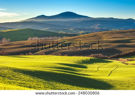 Tuscan colorful fields in the light of the setting sun in the background mountain. - stock photo