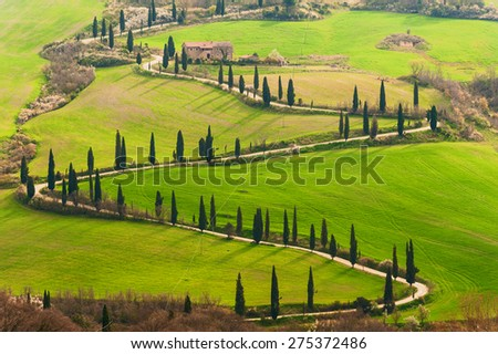Tuscan way home in the shape of S - stock photo