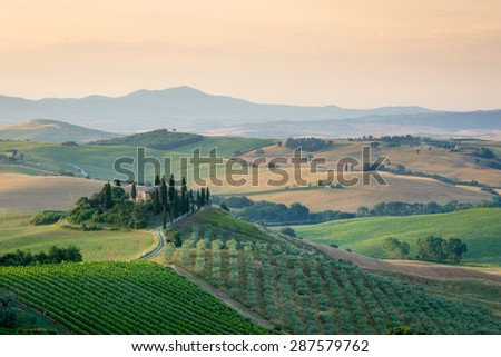 Tuscany, amazing country landscape with green and golden meadow hills, olive trees and agriturismo farmhouse