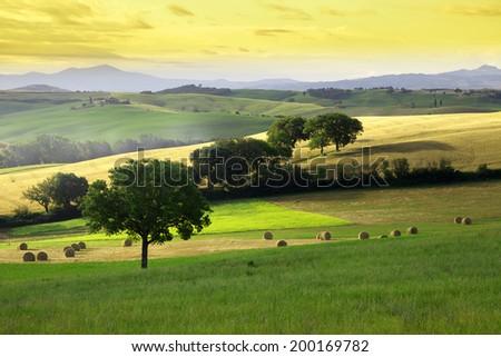 Tuscany bales - stock photo