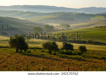 Tuscany hills  - stock photo