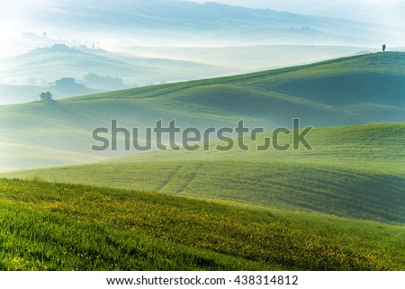 TUSCANY, ITALY - APRIL 14, 2016: Beautiful Tuscany landscape with field of flowers in Val d'Orcia, Italy
