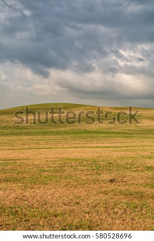 Tuscany landscape, beautiful yellowish green hills springtime in Italy,Europe
