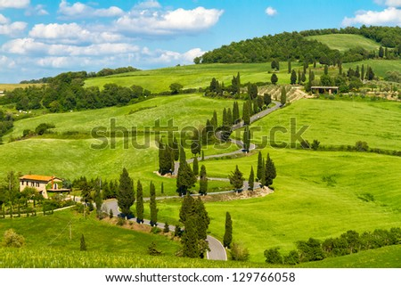 Tuscany road with cypress trees, Val d'Orcia, Italy