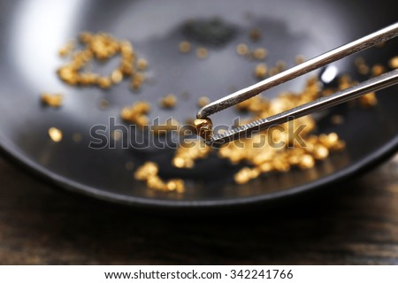 Tweezers holding Gold nugget grain, on black background, close-up - stock photo