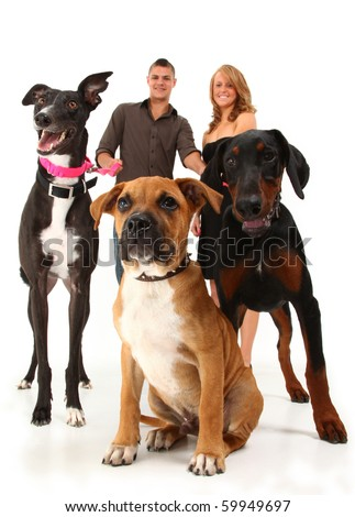 Twenties couple with three dogs, greyhound, boxer, doberman.  Over white background. - stock photo