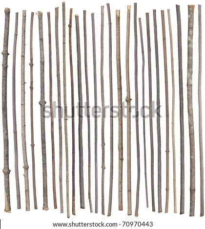 Twenty-five separated sticks isolated on white. - stock photo